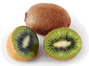 kiwi-fruit2